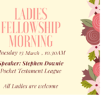 Ladies Fellowship Morning